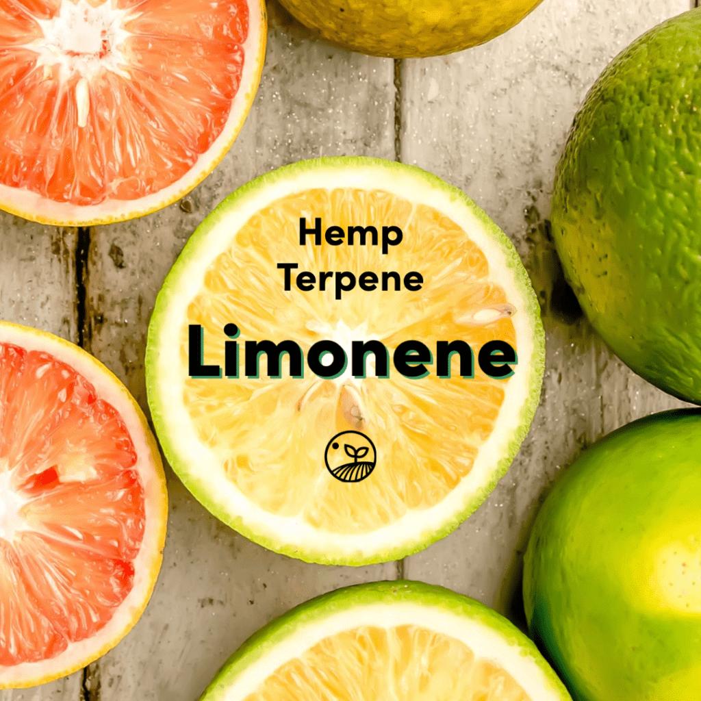 Hemp Terpene Limonene