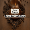 What is Beta-Caryophyllene & does it have unique benefits?