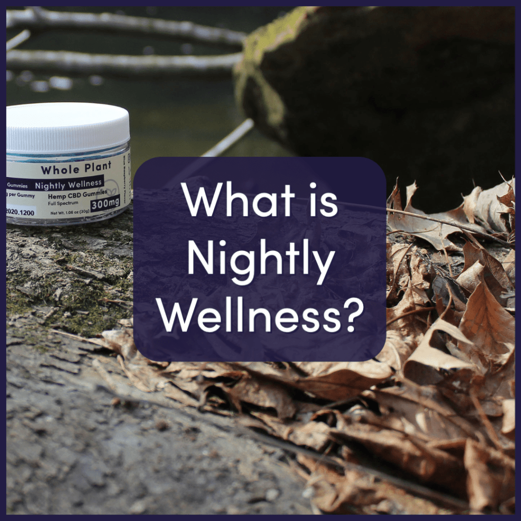 What is Nightly Wellness?