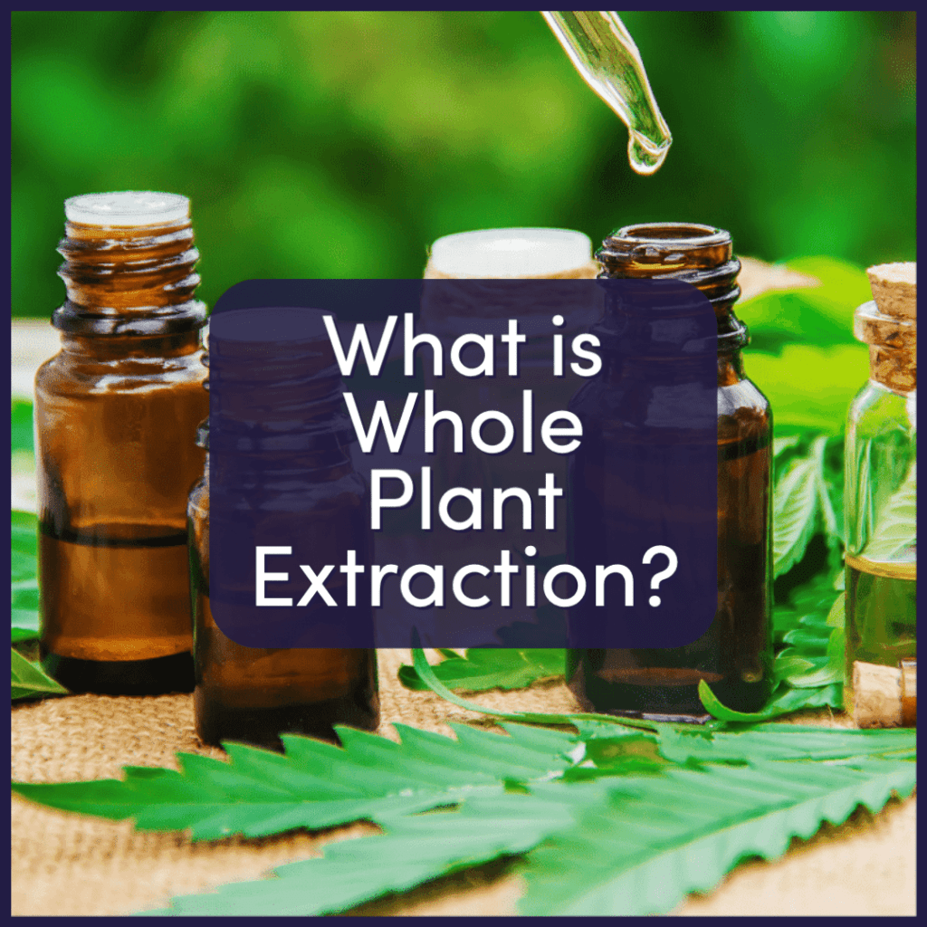 What is Whole Plant Extraction?