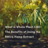 What is Whole Plant CBD: The Benefits of Using the Entire Hemp Extract