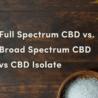 Full Spectrum CBD vs Broad Spectrum CBD vs CBD Isolate